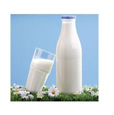 纯牛奶、酸奶、豆奶工艺